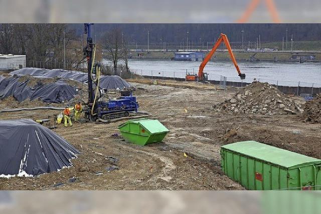 Sanierung der Kesslergrube: Roche lässt Erde wegbringen