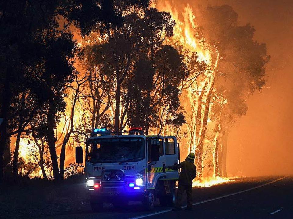 Wie in einer Stichflamme verbrennen  wir unsere Kohlenstoffvorräte.  | Foto: dpa