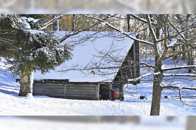 Eine neue Schutzhütte am Eichener See