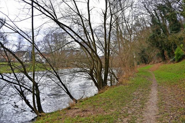 Grundbesitzer kritisiert Umweltgutachten der Stadt