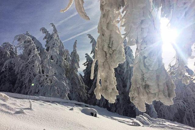 Schnee in Südbaden: Die schönsten Bilder aus den sozialen Netzwerken