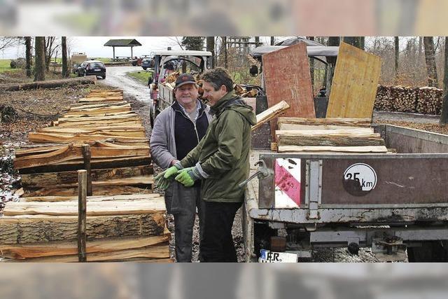 Sämtliches Holz verkauft