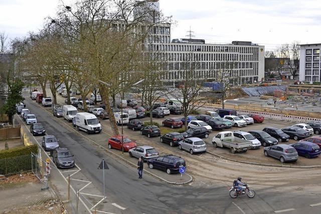 Abwägung zwischen Parkplätzen und Bäumen