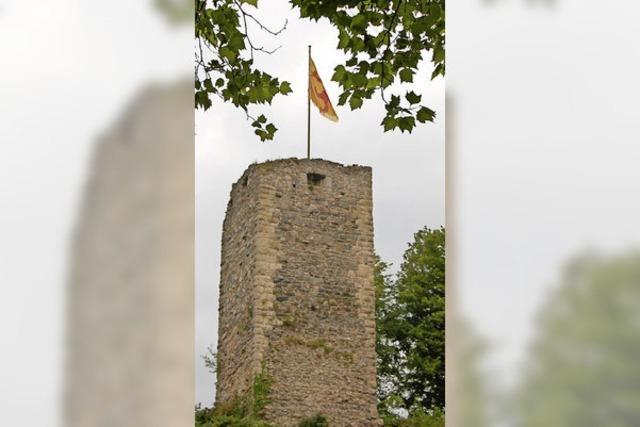 Spannende Reise von Burg zu Burg