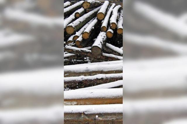 Abschwächung bei den Holz-Erlösen