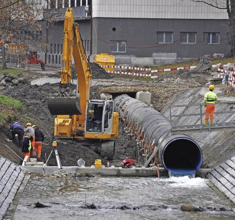 Die Neugestaltung des Nachtigallenwäld... Zoo verbessert den Hochwasserschutz.   | Foto: Gramespacher