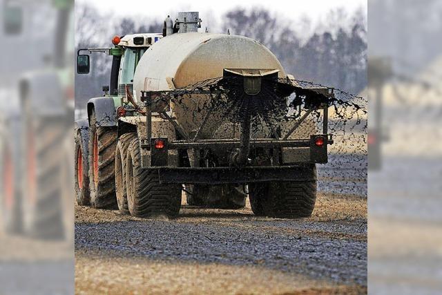 Ein Schritt zu weniger Nitrat auf Feldern