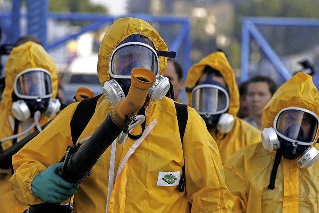 Virus breitet sich explosionsartig aus