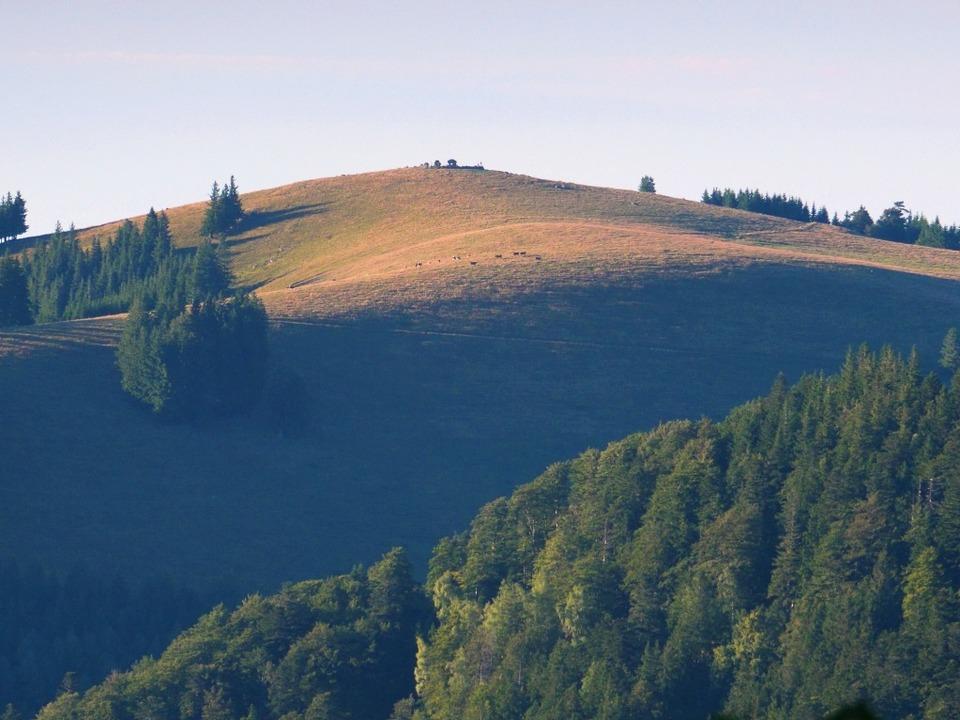 Blick vom Zastlertal zum Hinterwaldkop...er W. irgendwo in diesem Gebiet liegt.    Foto: Jörg Eckert