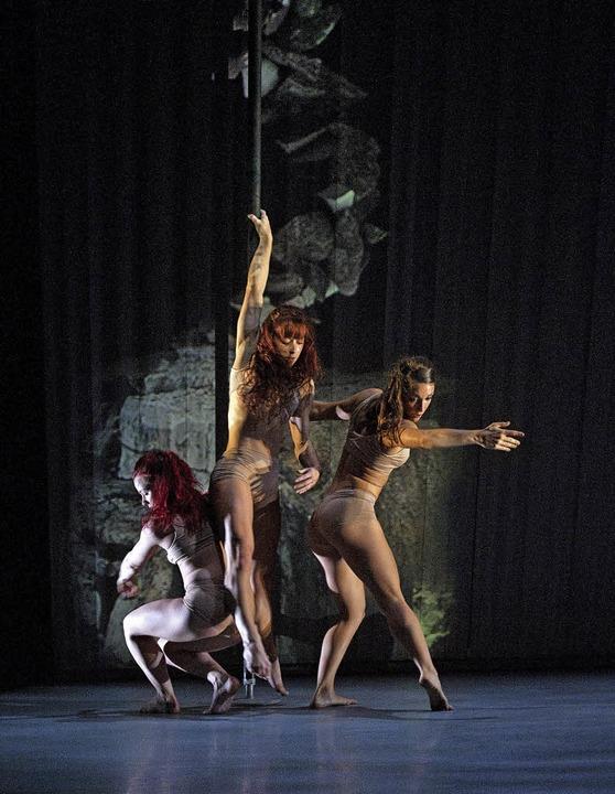 Tanz mit Projektionen, Elementen des Theaters und Akrobatik     Foto: ZVG