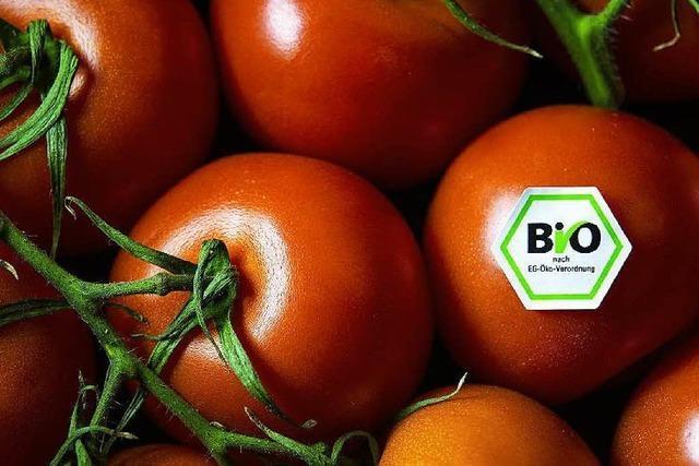 Bioanbau: Ist Kupfer als Pflanzenschutzmittel sinnvoll?