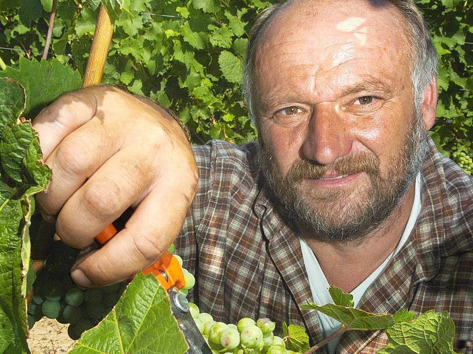 Kupfer ist ein wirkungsvolles Mittel gegen Pilzbefall im Weinbau.   | Foto: dpa