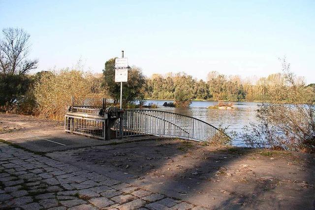 Rheinhochwasser in Schwanau soll schneller abfließen können