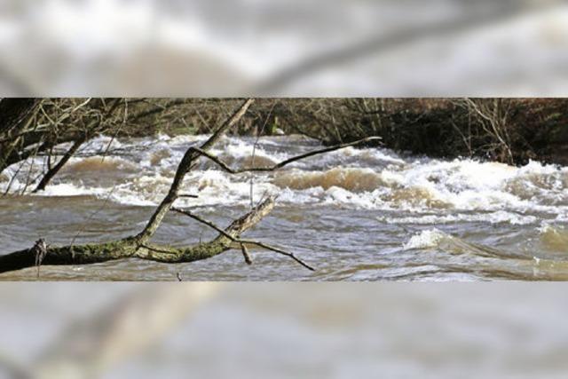 Schneeschmelze lässt Flüsse anschwellen