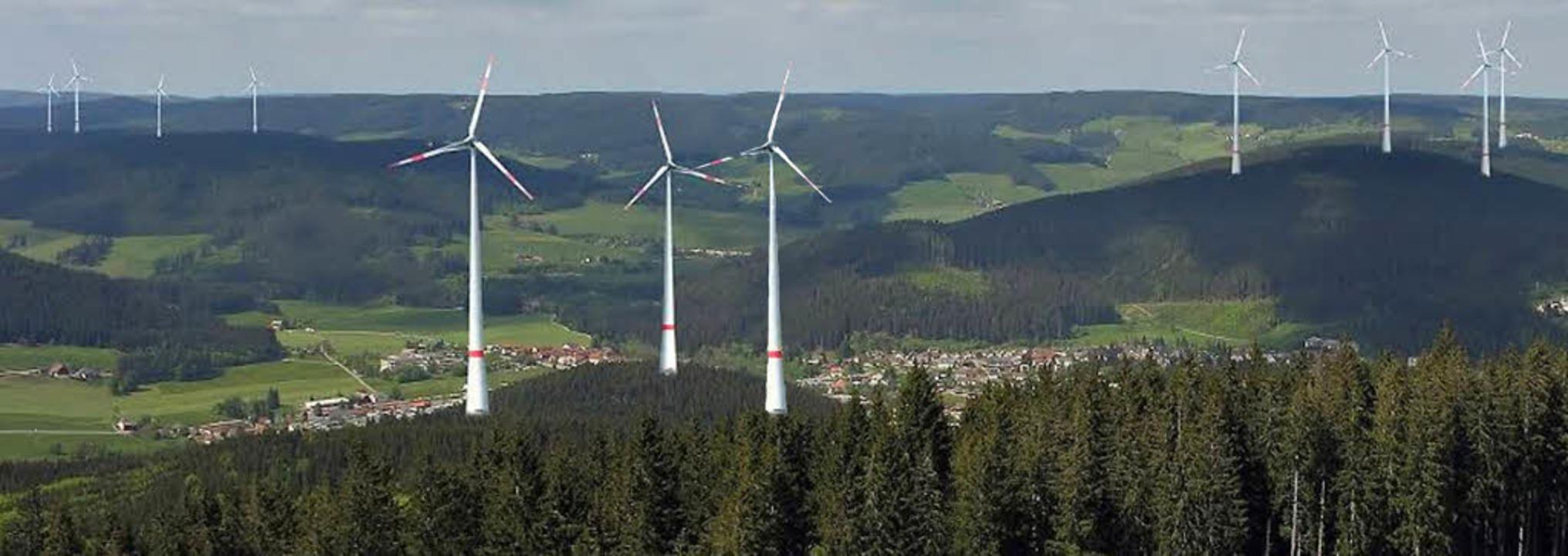 Diese Visualisierung hat die Bürgerini...rechts) und Wintersberg (links) kämen.  | Foto: FotoMontage: Landschaftsarchitekt Dipomingenieur Ulrich Bielefeld