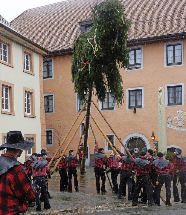 Die Zächen hieven den  Narrenbaum auf ...arktplatz mit Muskelkraft in die Höhe.  | Foto: Andreas Mahler