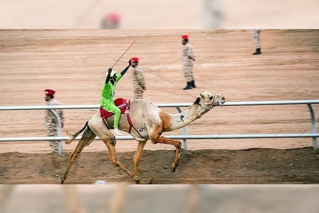 Steinmeiers Gratwanderung in Saudi-Arabien