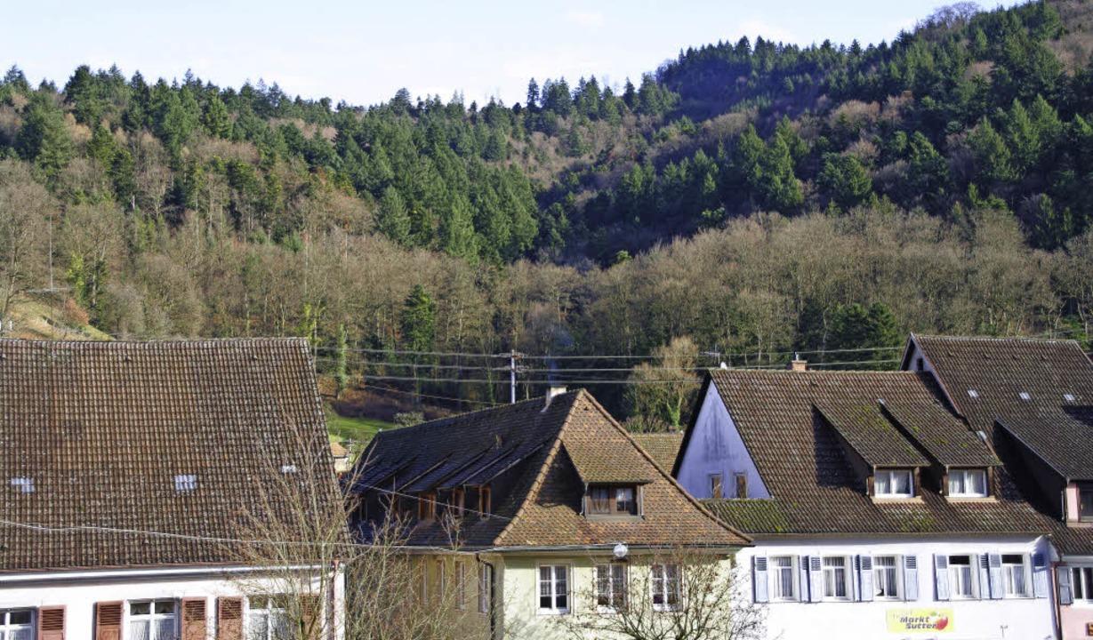 Sulzburg und der Wald – das ist ...iehung, die jetzt das Ökokonto füllt.   | Foto: Martin Pfefferle