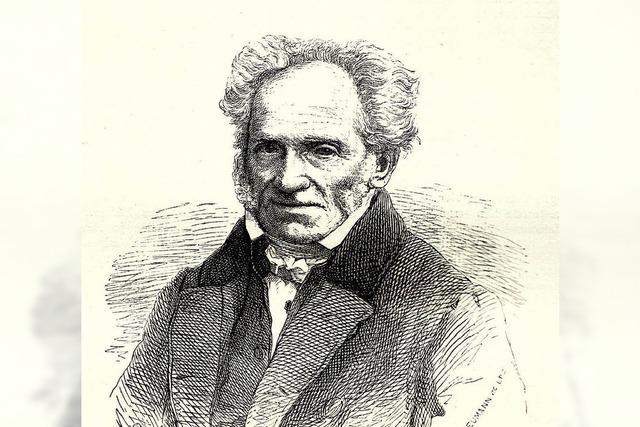 Einführung in die Philosophie Schopenhauers