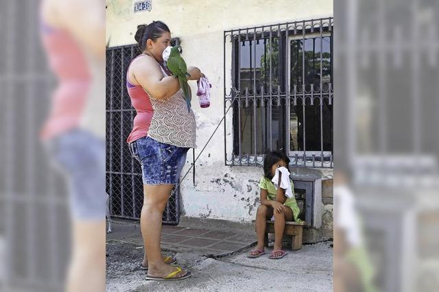 Mehr als 3100 Zika-Fälle in Kolumbien