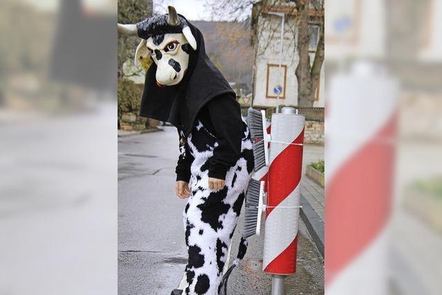 Freude bei Kuhbacher Kühen