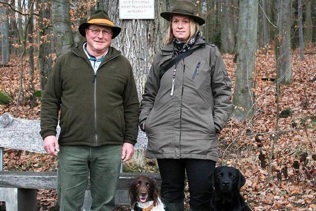 Gefahr für Hunde: In den Wäldern geht die Fuchsräude um