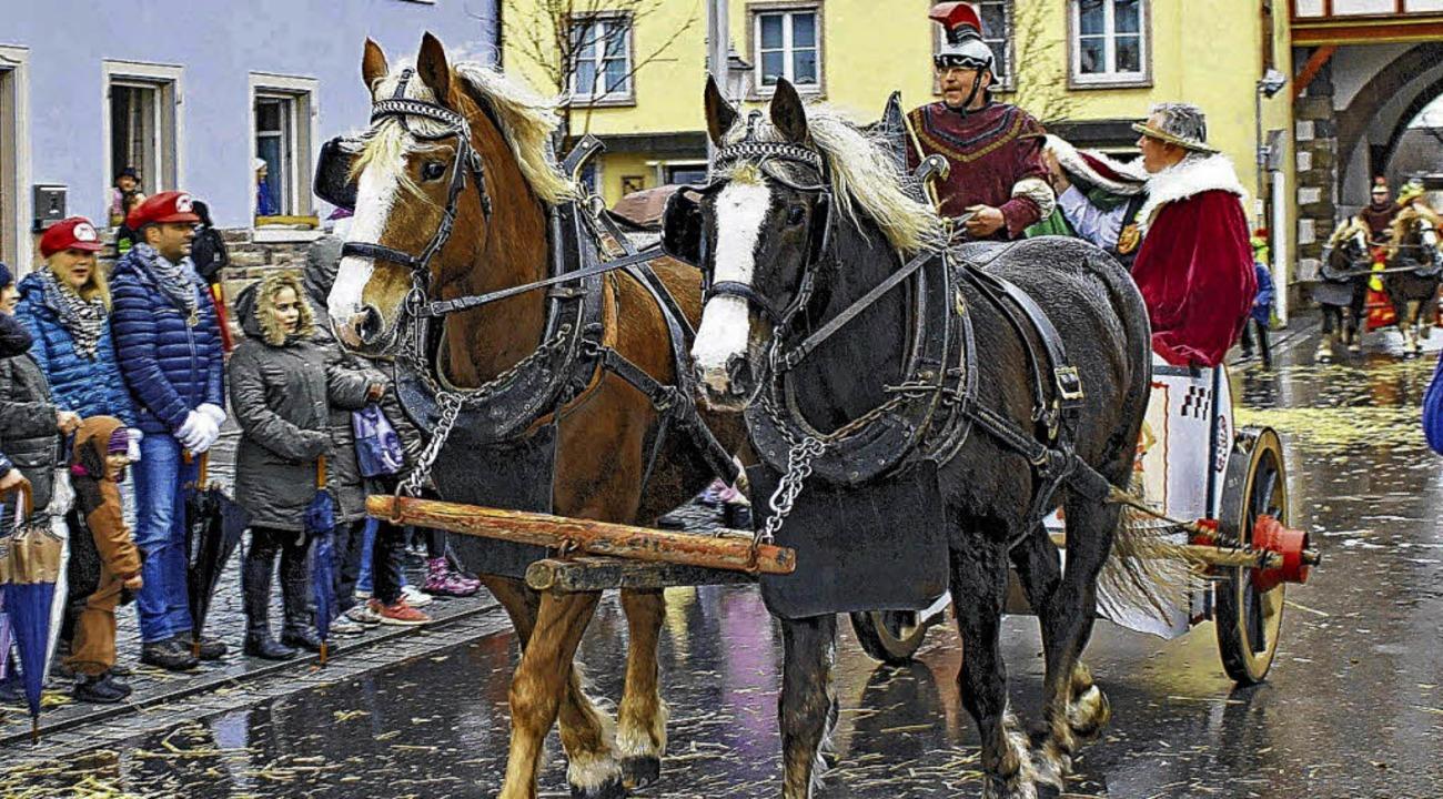 Römische Wagen mit Pferden der Legionäre beeindruckten die Alemannen.    Foto: Dagobert Maier