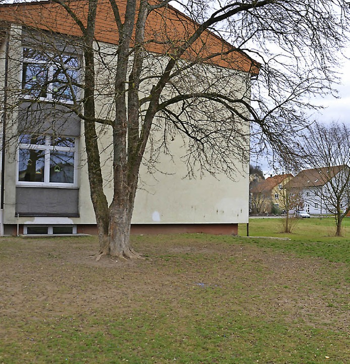 Hinter  Grundschule und  Allianz-Halle...eine Flüchtlingsunterkunft entstehen.   | Foto: MFS