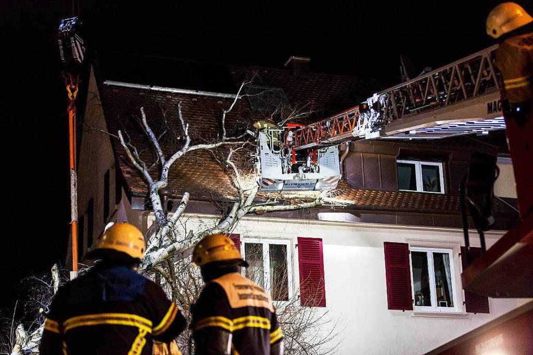 Von der Drehleiter aus wurde der umgestürzte Baum Stück für Stück zersägt.  | Foto: Carlotta Huber