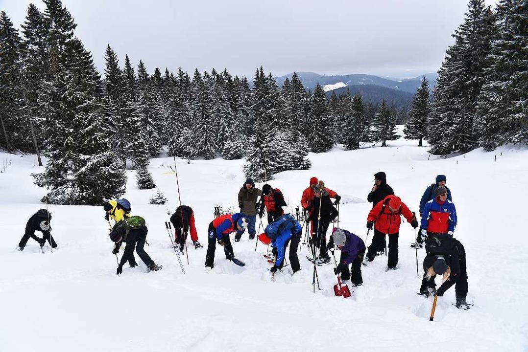 Voller Einsatz auf dem Feldberg: BZ-Le...Vermisstensuche unter der Schneedecke.    Foto: Philippe Thines