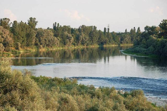 Angler findet vermisste Frau aus Bad Krozingen tot im Rhein
