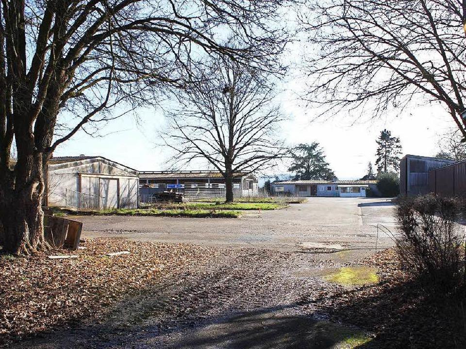 Der Hurster Hof bei Rust wird für den Bau des neuen Wasserparks abgerissen.  | Foto: Adelbert Mutz