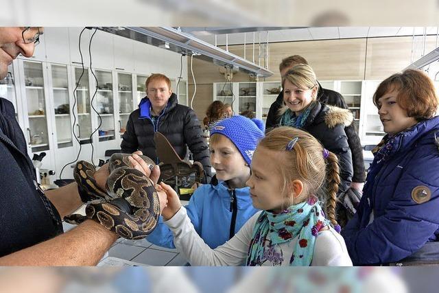 Aktionen und Osterbasar rund um das Gymnasium in Titisee-Neustadt