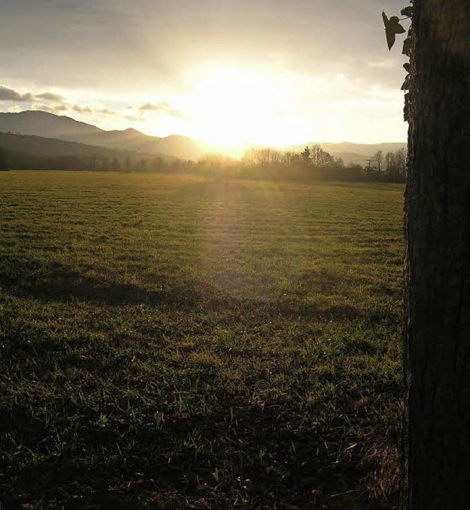 Freier Blick zum Kandel: Noch ist das Gebiet Haselwald/Spitzmatten unbebaut.  | Foto: Sylvia-Karina Jahn