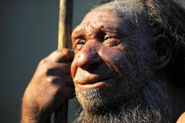 Neandertaler und Mensch kamen sich schon früh sehr nahe