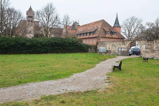 Auf dem Münsterberg entsteht ein Klostergarten