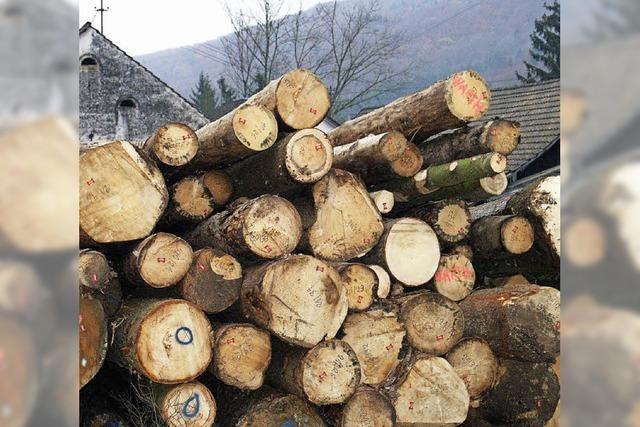 Beim Holzmachen geht's um die Balance