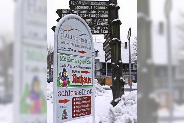 Schilderwald im Dorf