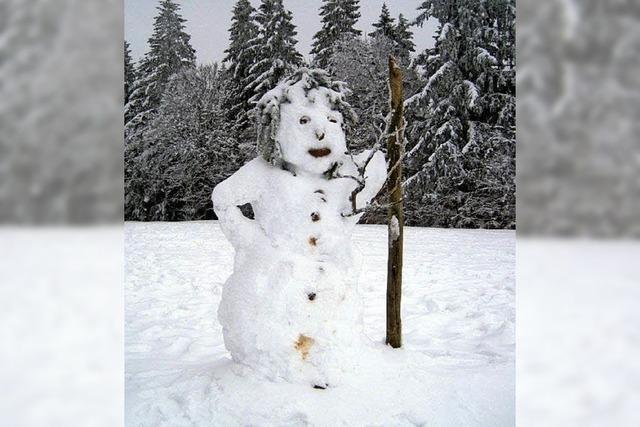 Schneemann bei Hofsgrund