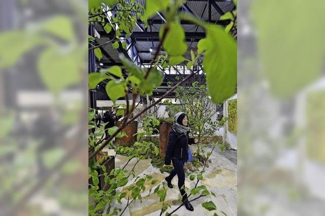 Die Gartenmesse zeigt mehr als nur Blumen und Beete