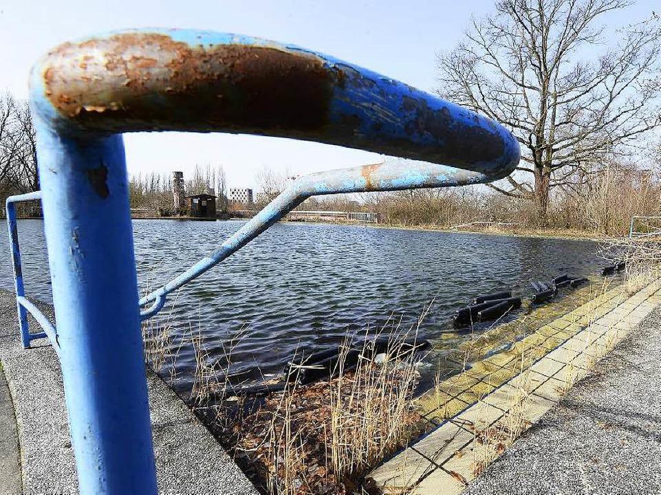 Still ruht das ehemalige Außenbecken d...tbads, das ein Naturbad werden könnte.  | Foto: Ingo Schneider