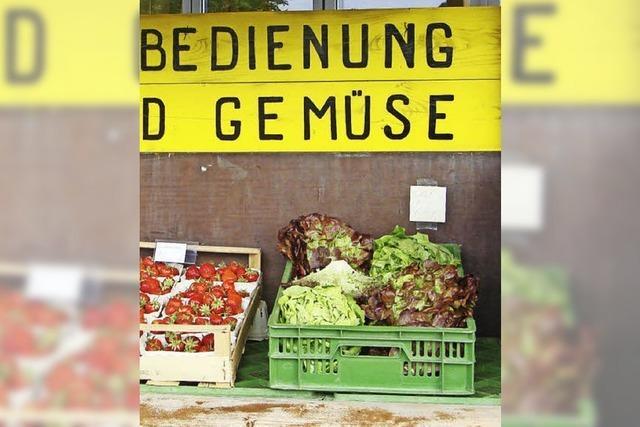 Aktuelles rund ums Gemüse