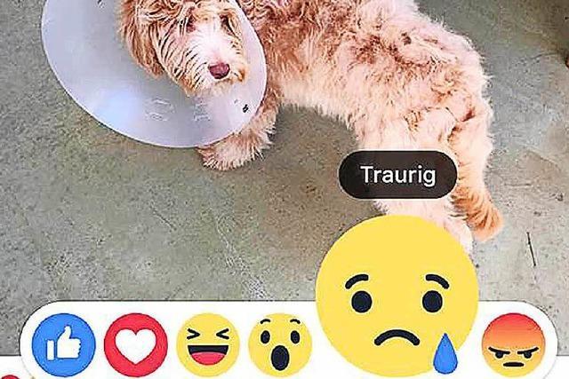 Neue Emojis ergänzen nun die