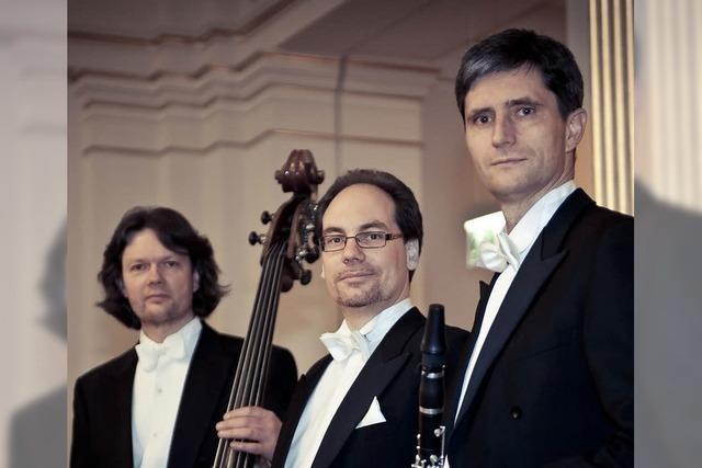 Trio Artpassion im Schloss in Ebringen