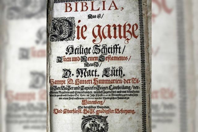 Martin Luther, Medienstar