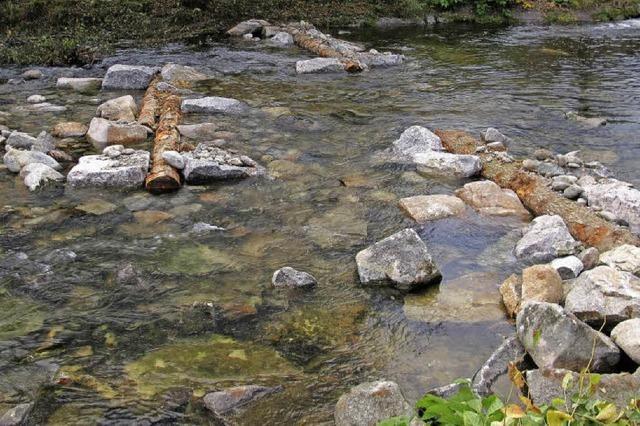 Biologisch noch einiges im Fluss
