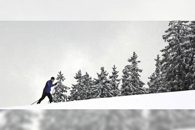 Langlauffreude im Schneeloch Hellewand