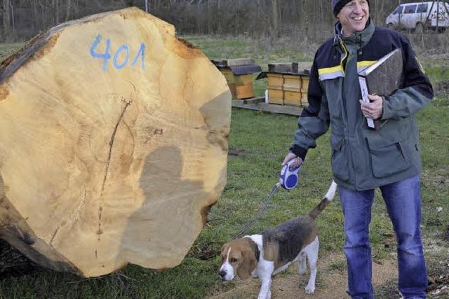 Holz aus der Ortenau ist gefragt