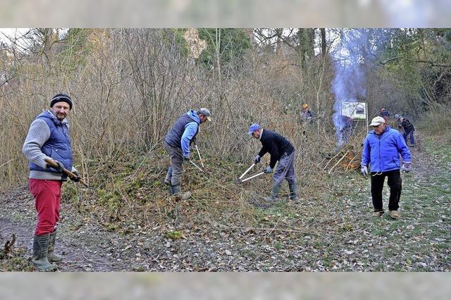 Einsatz für die Natur auf dem Limberg