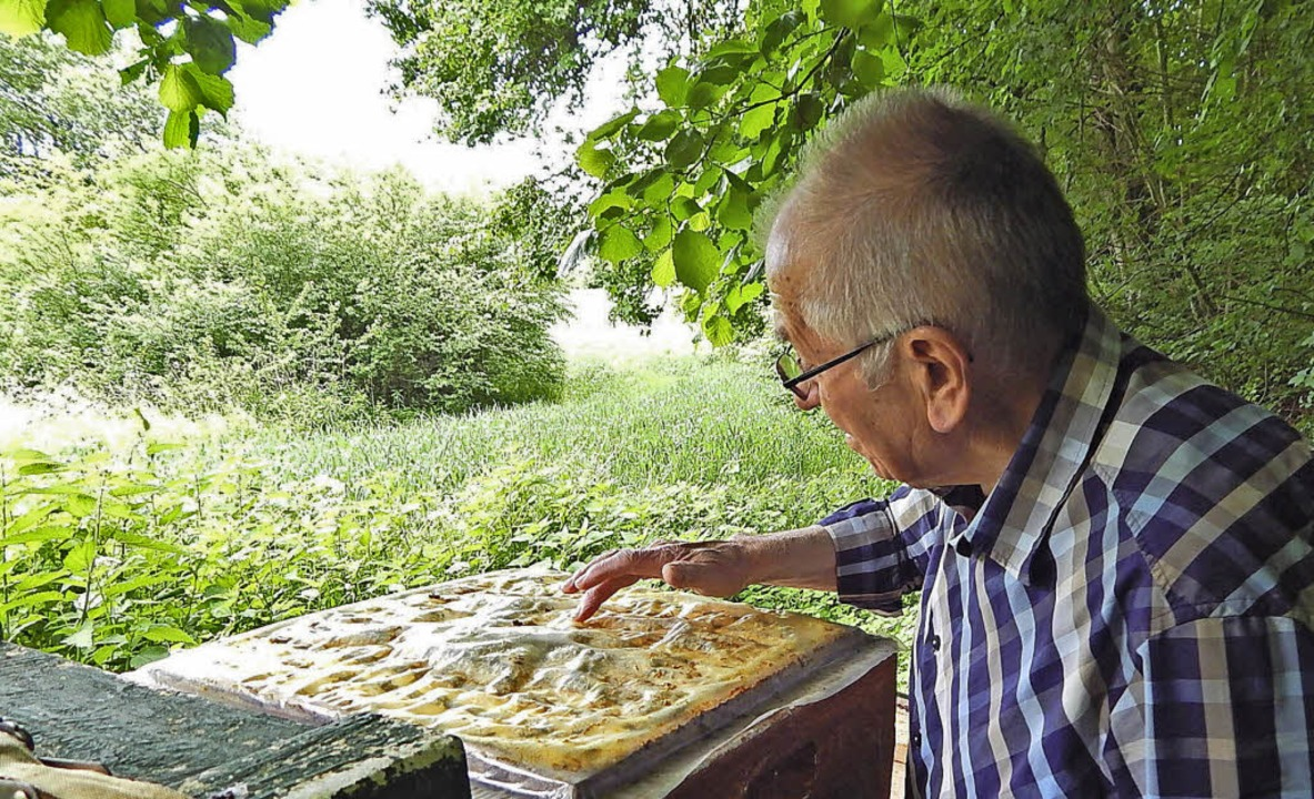 Herbert Dietsche freut er sich über den bereits sichtbaren Honig.   | Foto: Archivfoto: Claudia Gempp